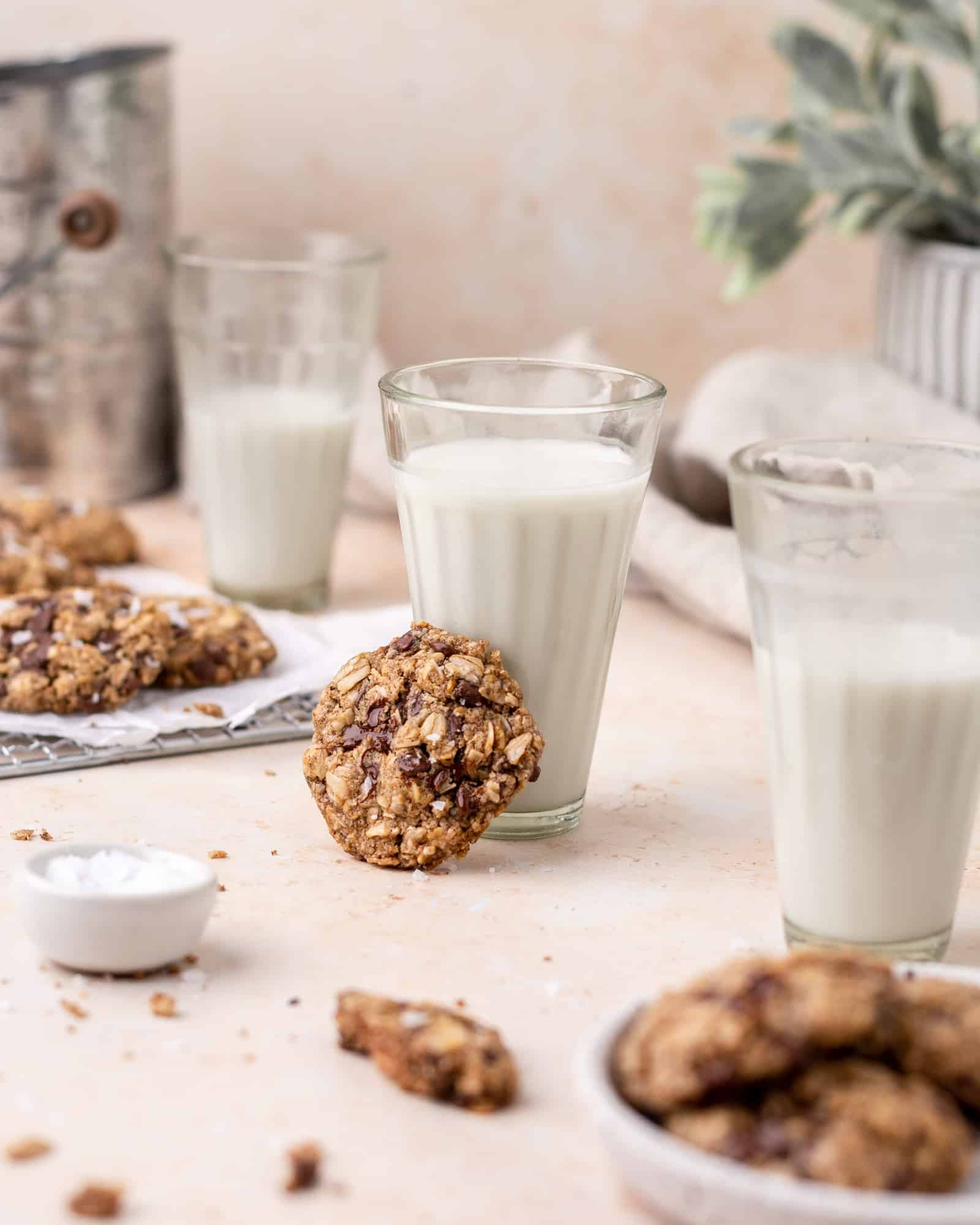 oatmeal chocolate chip cookie leaned on a glass of milk