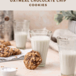 Pinterest Pin for Oatmeal Cookies